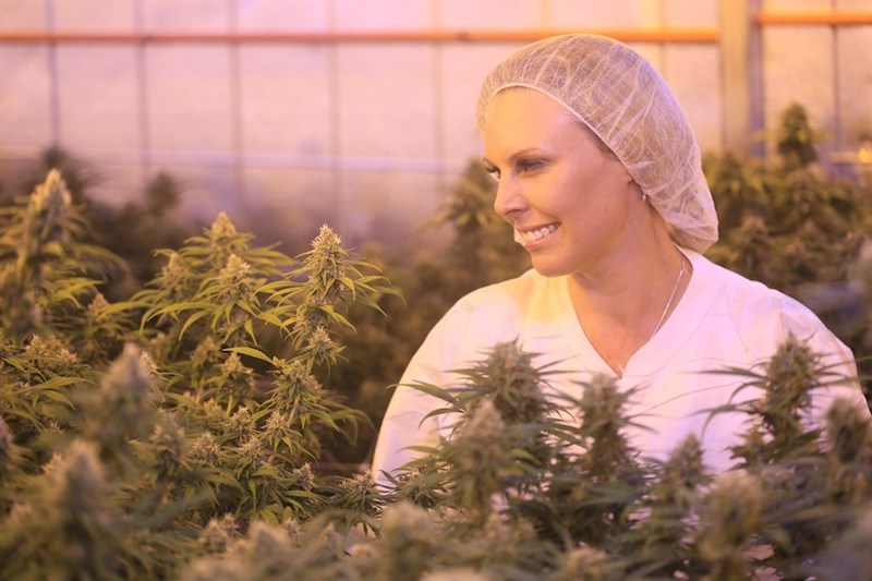LGC Capital's Australian LP Little Green Pharma Becomes Country's First Company Authorized to Sell Locally-Grown Medicinal cannabis