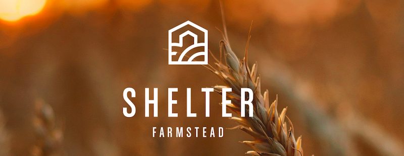 Shelter Welcomes Director of Retail Strategy