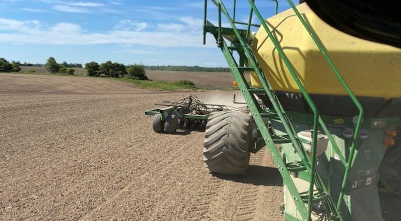 AgraFlora Organics Commences High Quality CBD Cultivation at Binbrook Farm