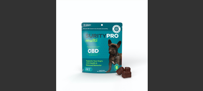 Canopy Animal Health Launches New Generation of CBD Products for Dogs - SurityPro