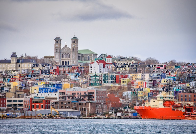 FSD Pharma Inc. Expands into Newfoundland for Production and Sales