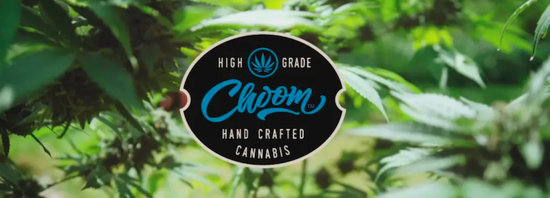 Choom Strengthens Its Place in Ontario Retail Landscape
