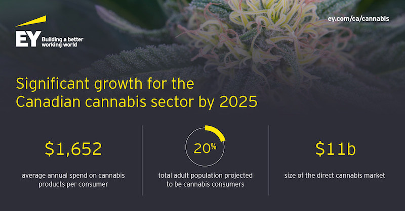 One-in-five Canadian Adults Expected to be Cannabis Consumers by 2025