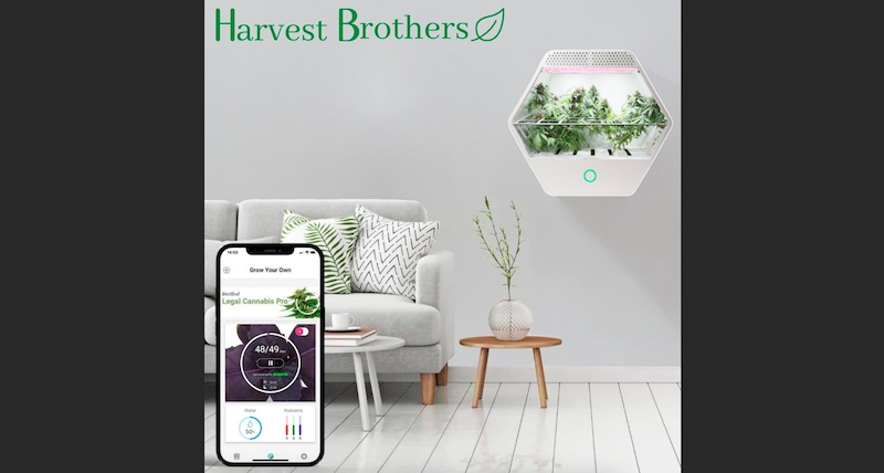 Harvest Brothers Announces the North American Launch of Linfa Weezy, the world's smartest cannabis grow box