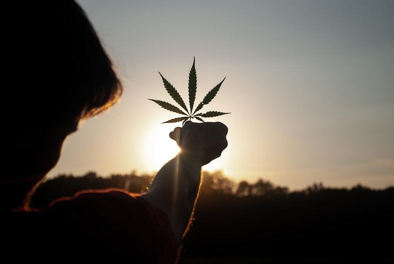 VIVO Cannabis™ Announces Fourth Quarter 2020 Results