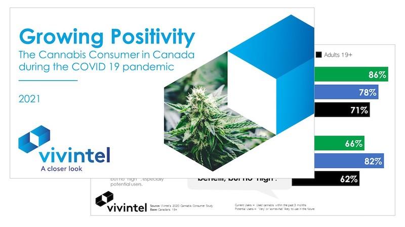 Vivintel Releases Latest Cannabis Report